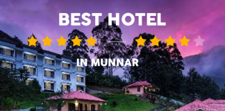 13 Best Hotels in Munnar
