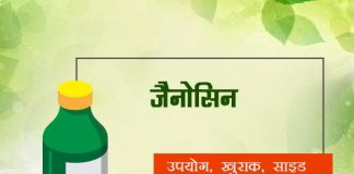 Zanocin fayde nuksan in hindi