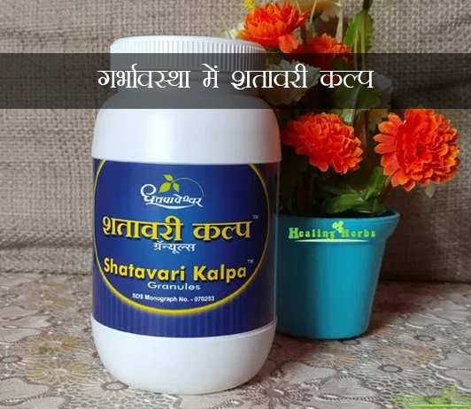 Shatavari Kalpa ke fayde aur nuksan in hindi