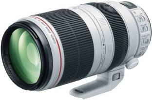Canon EF 100-400mm L IS II USM f/4.5 - 5.6 Lens