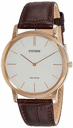Citizen AR1113-12A Analog Watch