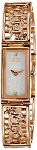Titan NC9901WM01 Analog Watch