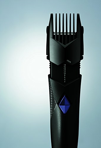 Panasonic ER 417 K Nose & Ear Hair Clipper Trimmer