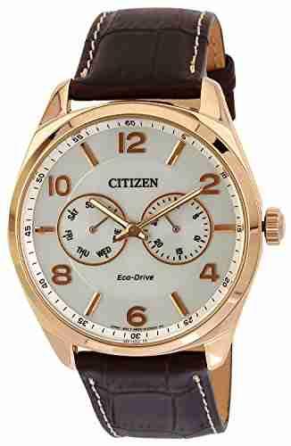 Citizen Eco-Drive AO9024-08A Analog Watch (AO9024-08A)