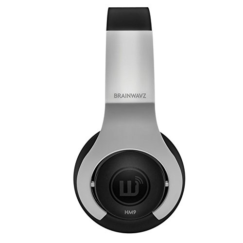Brainwavz HM9 On the Ear Headset