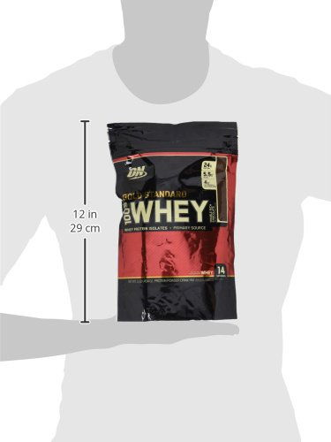 Optimum Nutrition 100% Whey Protein Gold Standard Pouch (1lbs, Chocolate)