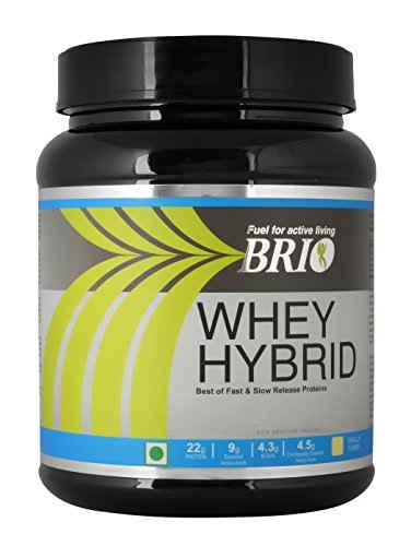 Brio Whey Hybrid (500gm, Strawberry)