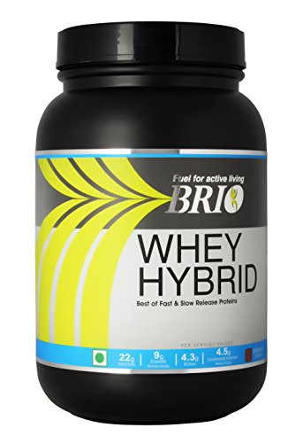 Brio Whey Hybrid (1Kg / 2.2lbs, Strawberry)