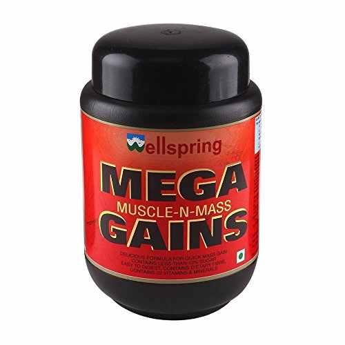 Wellspring Mega Gains (700gm)