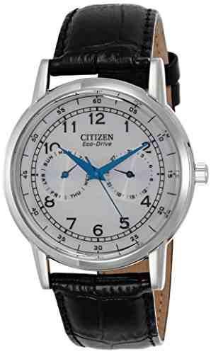 Citizen AO9000-06B Analog Watch (AO9000-06B)