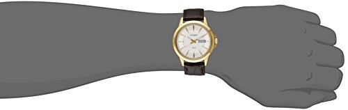 Citizen BF2018-01A Gold-Tone Stainless Steel Men's Watch (BF2018-01A)