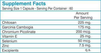 Healthvit Fatnile Natural Fat Burner with Garcinia Cambogia (60 Capsules, Pack of 2)