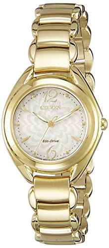Citizen Eco-Drive FE2072-54A Analog Watch
