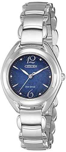 Citizen Eco-Drive FE2070-50L Analog Watch (FE2070-50L)