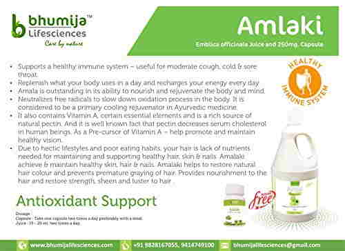 Bhumija Lifesciences Amalaki 250mg Supplements (60 Capsules)