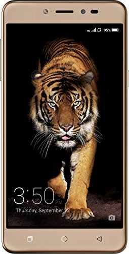 Coolpad Note 5 32GB Royal Gold Mobile