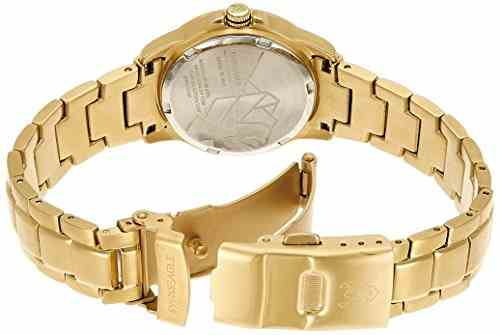 Swiss Eagle SE-6043-11 Special Collection Analog Watch (SE-6043-11)
