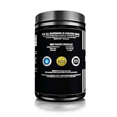 Kaged Muscle Glutamine Powder (500gm / 1.11lbs, Unflavoured)