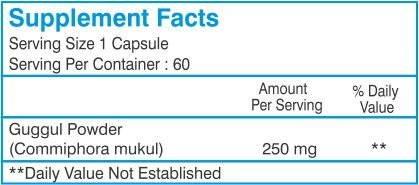 Healthvit Guggul Powder 250 mg Supplements (60 Capsules Pack Of 2)