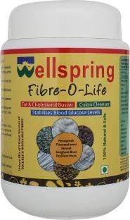 Wellspring Fiber-O-Life Whey Protein (360gm)