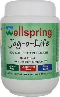 Wellspring Joy-O-Life Whey Protein (500gm)