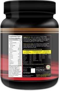 Inlife Whey Protein Powder Supplement (454gm, Chocolate)