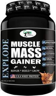 World Nutrition Explode Muscle Mass Gainer Powder (1Kg, Chocolate)