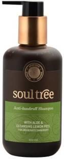 SoulTree Anti Dandruff Shampoo 250ml
