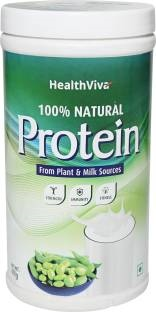 Health Viva Natural Protein (400gm)