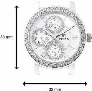 Titan NF9743SM01 Analog Watch (NF9743SM01)