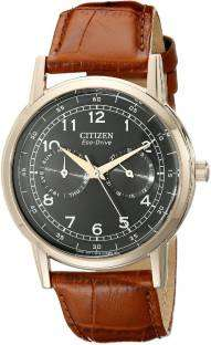 Citizen Eco-Drive AO9003-08E Stainless Steel Men's Watch (AO9003-08E)