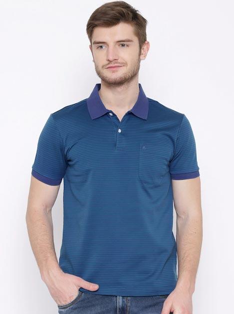 Arrow Purple & Green Striped Polo T-shirt