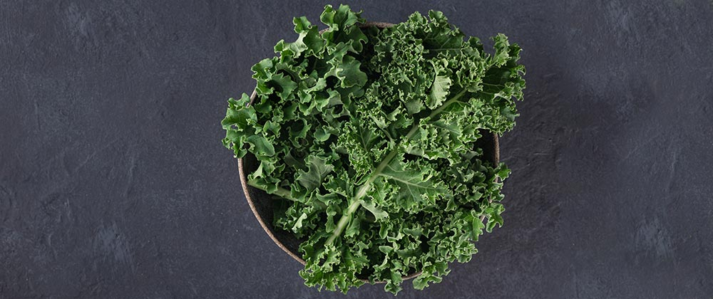 Products for All Your Kale Needs