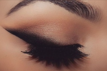 Bold Wing
